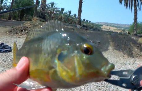 """ליאור בן חיים: """"חוף פרטי מפוצץ דגים…"""""""