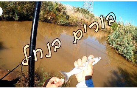 """עמית משני דייגים: בורים בנחל"""""""