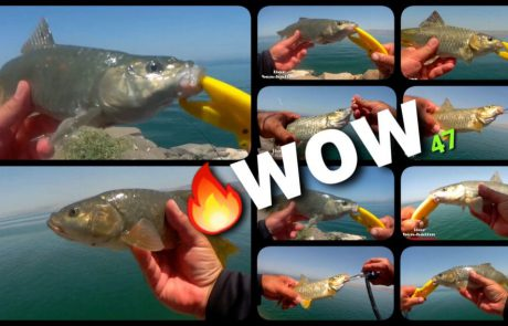 """ליאור בן חיים: """"היום הכי טוב שהיה לי השנה-טירוף של דיג-כל זריקה דג!"""""""