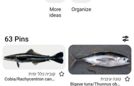 "Gal Goldman: ""מדריך דגים טוב ונגיש בעברית"""