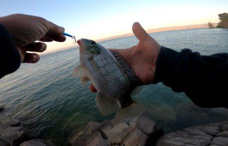 """נפתלי: """"סירטון חדש בערוץ בדקנו מתי יש יותר דייג בכנרת בזירזור זריחה או שקיעה"""""""
