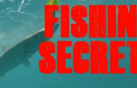 שלומי: איך להכין ריג לעבודה עם דג שפיץ בטרולינג (FISHING SECRETS)