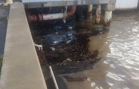 """המשרד להגנת הסביבה: """"זיהום ים קטן ברציף הכימיקלים בנמל חיפה"""""""