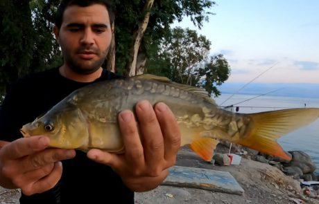 """נפתלי דייג במים ממתוקים: """"דיג קרפיונים בכנרת"""""""