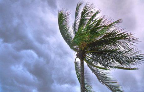 """עף לנו הפוני – תחזית למזג אוויר סוער של סופ""""ש"""