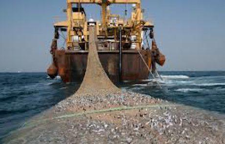 TheMarker : הרס הדגה ובתי הגידול בחופים מוביל לקריסת ענף הדיג הימי והספורטיבי